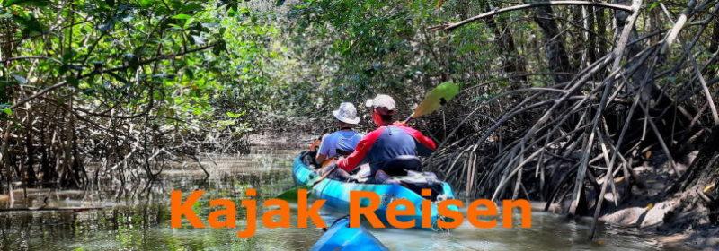 Slider Kajak in den Mangroven
